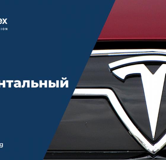 Tesla | Фундаментальный Анализ1